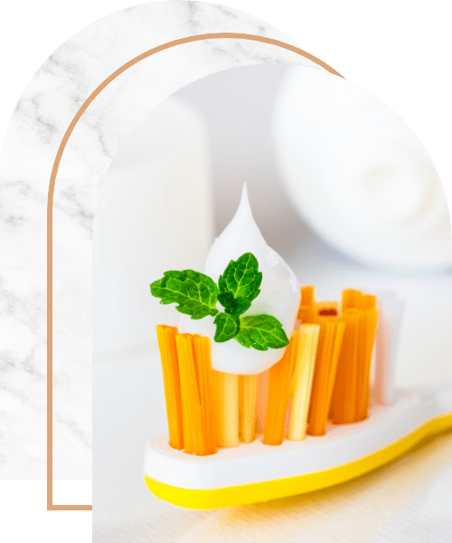 Tooth brush with tooth paste and fresh mint