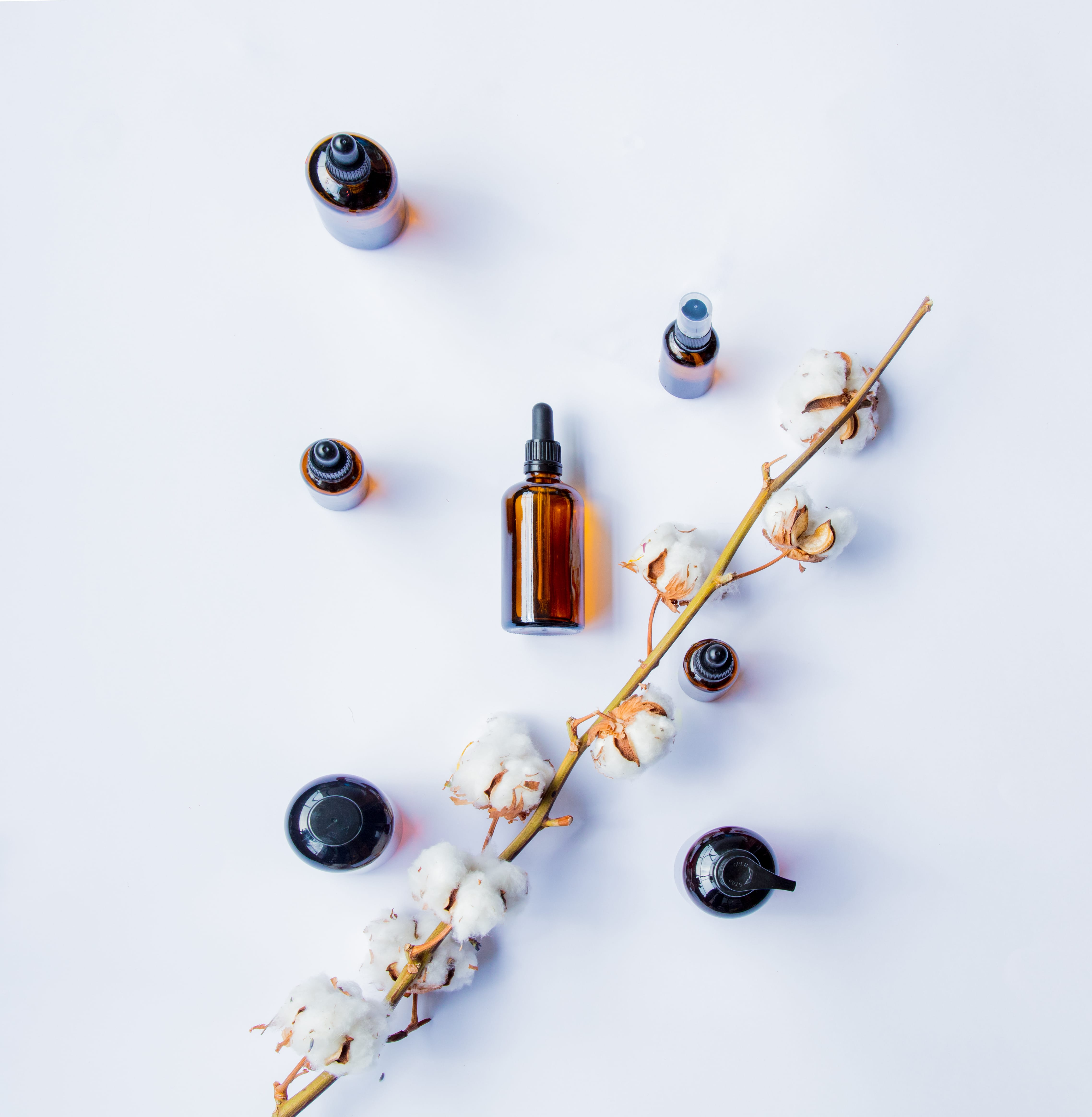 perfumer glass bottles with perfumes and cotton branch on white background.